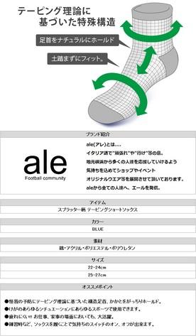 20170810c05.jpg